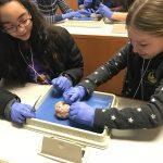 Girls STEM careers